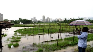 The Kharghar land was given to Koyna project-affected persons who later sold it to a builder.(HT Photo)