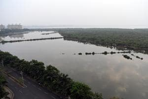 In order for new areas to be designated as wetlands, they must be identified as such by the state.(HT Photo)