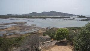 Environmentalists have questioned the state mangrove and wetland panel's claim that Panje is not a wetland. (Reptresentative Image)(Pratik Chorge/HT Photo)