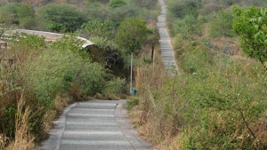 Amit Khatri, deputy commissioner, added that the total area earmarked for restoration in different parts of the district under the Jal Shakti Abhiyan amounts to about 1,500 acres.(HT image)