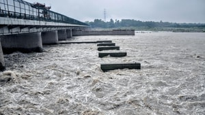 This is a first-of-its-kind project in the country, which aims to conserve excess water flowing down the river during the monsoon by creating a mega reservoir in the floodplains between Palla and Wazirabad.(HT image)