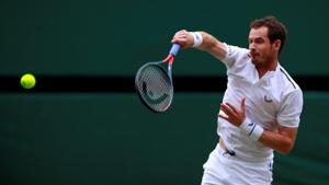Andy Murray hopes to be fit enough by next year to play Federer, Nadal