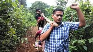 With a 12-year-old patient on sling, Odisha doctor walks 5 km through a forest and hill