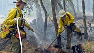 DSSSB Recruitment: 706 fire operators required in New Delhi(HT file)