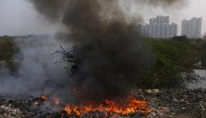 Noida authority told to penalise vendor for waste burning