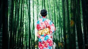 Japan reopens exhibit closed over Korean 'comfort woman' statue