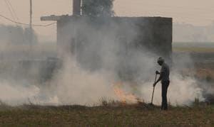 Farmer burning paddy straw at Devigarh village near Patiala on Sunday.(HT Photo)