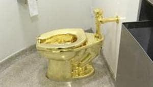 UK police try to track gold toilet 'America'; 5 held on suspicion of burglary