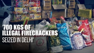 Delhi police seize over 700 kgs of illegal firecrackers, accused arrested