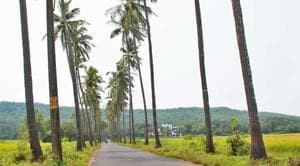 """Signages of the village panchayat notice which reads, """"Swachhta tax/Mission Clean Parra Tax will be levied on all film shoots, photo shoots, etc. Tax will vary from individuals and commercials"""" went viral on Tuesday.(Photo: parrapanchayat.com)"""