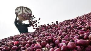 Early morning bonanza for Bokaro villagers after van full of onions overturns