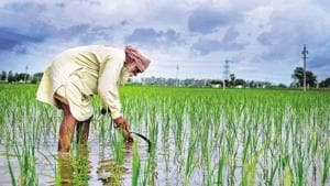 Indian science congress to focus on farmers, rural India