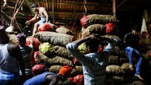 Indian laborers work at a wholesale vegetable market in Kolkata. Hanke opined that Modi government seems to have little interest in making tough and required economic reforms.(AP)
