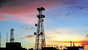 Mobile telephony dominates Indian telecom market with 98% market share.(Photo: Mint)