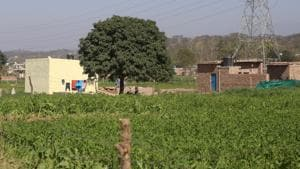 One of the villages which falls under the Sukhna catchment area and has illegal constructions.(HT FILE)