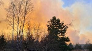 A forest fire burning at a 30-kilometer (19-mile) Chernobyl exclusion zone, not far from the nuclear power plant.