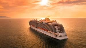 Life in the times of lockdown:A cruise—yes, a cruise—will be the way Irecover after all this