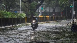 A scooterist moves on a road where a tree fell during rains and strong winds triggered by Cyclone Nisarga in Mumbai.(PTI)
