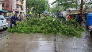 According to officials, 85 large trees, some of which fell over houses, and 11 electric poles were ripped out as the National Disaster Response Force (NDRF) said its team will assess the damage once cyclonic storm completes landfall.(PTI photo)