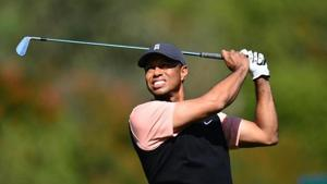 File photo of Tiger Woods.(File)