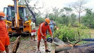 Residents of nearby Supe village have been assisting the forest staff in mending damages to affected structures.(ANI file photo. Representative image)