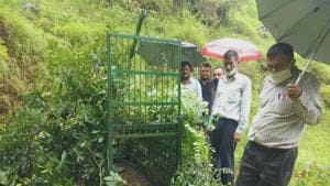 Forest officials inspecting the cage after installation in Almora district of Uttarakhand.(HT Photo)