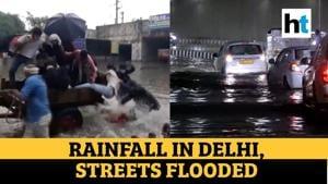 Watch: Bullock cart on flooded street of Delhi; Gambhir slams AAP govt