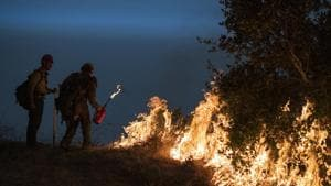 Firefighters light a controlled burn along Nacimiento-Fergusson Road to help contain the Dolan Fire near Big Sur, California.(AP)