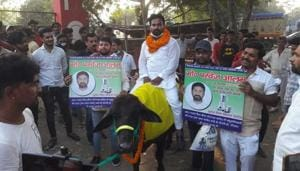 Candidate in Gaya booked for riding a buffalo for election campaign