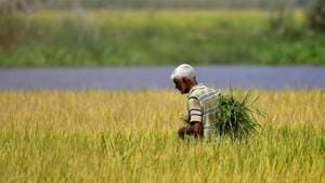 Agri reforms: The disjunct between the right ends, wrong means