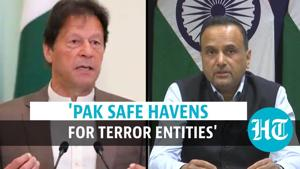 India calls Pakistan 'safe havens for terror entities' ahead of FATF test