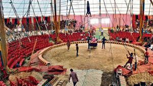 Hit by pandemic, India's circuses forced to walk financial tightrope
