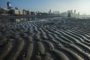 The MCZMA has deferred a proposal by the state's harbour engineering division to beautify Dadar beach.(HT archive)
