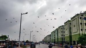 Dark Clouds hover over the city as Cyclone Nivar to cross the state, in Chennai on Tuesday. (ANI Photo)