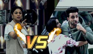 Kavita Kaushik and Aly Goni got into a nasty fight on Bigg Boss 14.