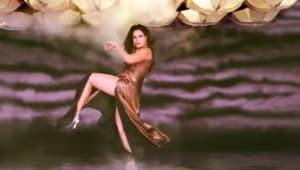 Shakeela stars Richa Chadha in the lead role.