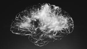 The findings published in PNAS and Science shows how the brain functions while encoding time and place into memories.(Unsplash)