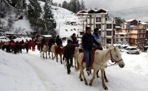 Tourists enjoying a pony ride at Kufri near Shimla on Wednesday.(HT Photo)