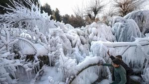 The mercury dipped to minus 4 degrees Celsius in Srinagar on the intervening night of Sunday and Monday, 2.5 notches below the normal, said a meteorological department officer.(PTI)