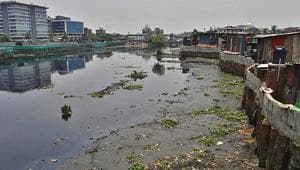 Can clean Mithi river, improve water quality in 2 years: Maharashtra...