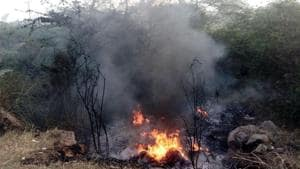 Teams from various police stations were patrolling areas under their jurisdiction to check garbage burning or other violation of NGT norms.