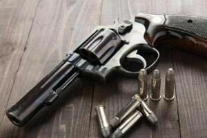 Haryana govt bans carrying arms at wedding functions