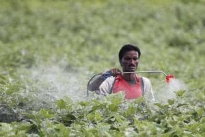 Centre to continue use of 51 pesticides, banned worldwide: Delhi HC...