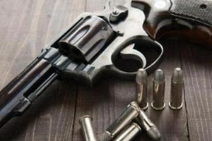 According to sources, 343 arms licences have been issued by the police to 333 males and 10 females form January 1, 2016.