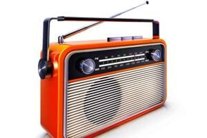 Govt announces 90% subsidy for community radio stations in...