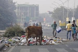 Noida roads littered on as workers continue strike