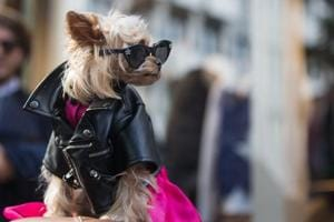 Little Lola Sunshine  wears a leather jacket, black sunglasses, and a pink dress outside the Valentino show at the Spring/Summer 2017 Paris Fashion Week.