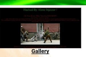The website was hacked on Sunday by a group that identified itself as 'Alone Injector'.