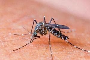 Malaria infection depends on number of parasites, not number of...