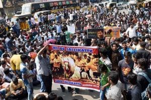 People protest the ban on Jallikattu in Madurai.